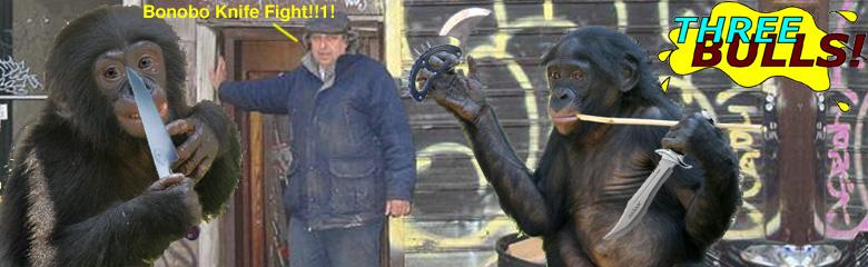 2-bonobo-knife-fight.jpg